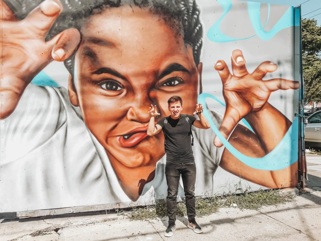Roarr murales